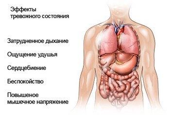 Клаустрофобия: причины, симптомы, диагностика, лечение, профилактика