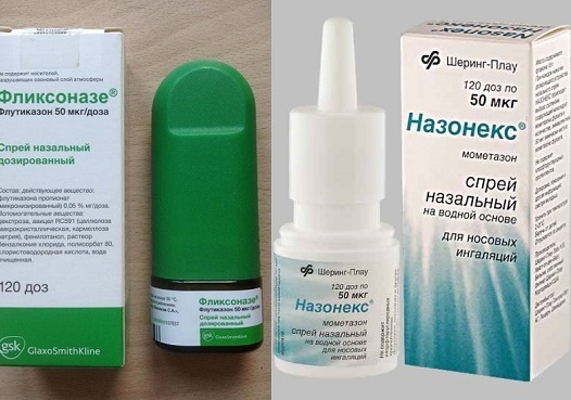 Аллергический насморк: симптомы, лечение – эффективные средства от аллергического насморка