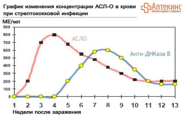 О чем говорит повышение АСЛ-О (антистрептолизина-о) в анализе крови?